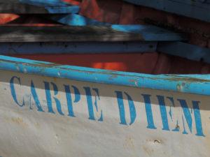 coque de bateau carpe diem